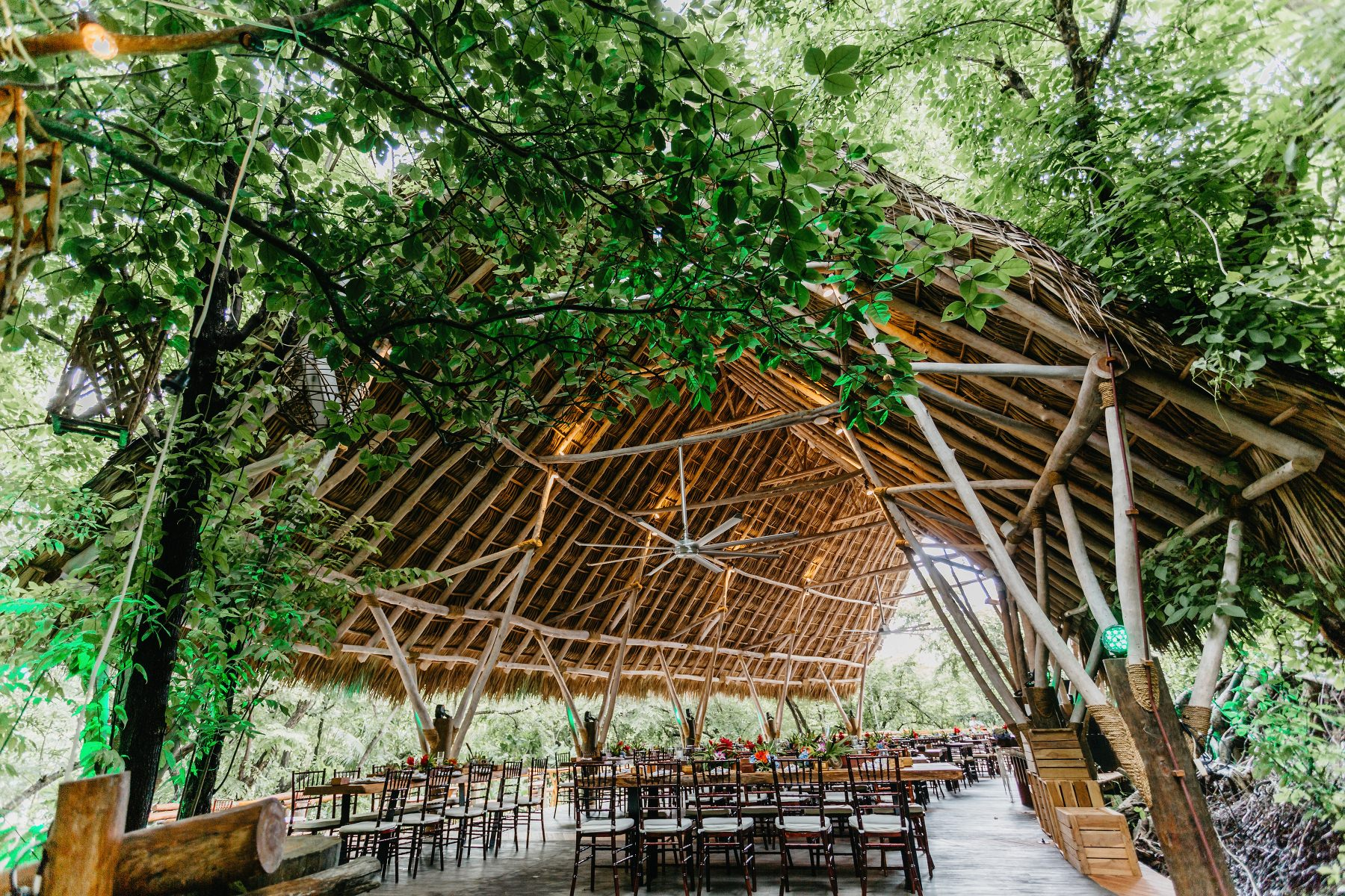 Tropical wedding Venue ideas